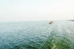 大通/天泓渔业养殖观光湖面。
