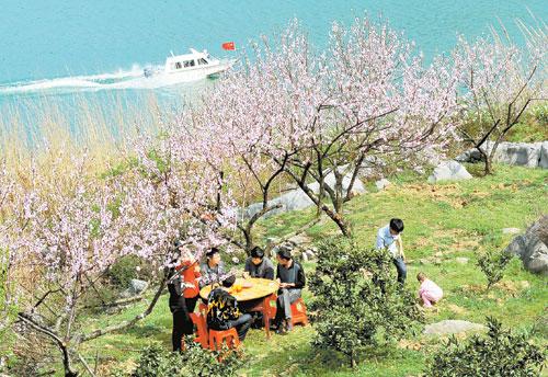 """这座岛屿因遍种桃树被命名为""""桃花岛"""",岛上居民全部是东江水库避险"""