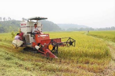 2011年7月20日,慈利县零溪镇拣花村种田大户陈延忠正驾驶水稻收割