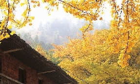 湖南印象|乡村旅游节 火热一冬 新湖南www.hunanabc.com