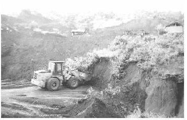 翠的果园被非法开矿者挖得千疮百孔.梁家园摄-桂东村民非法锰矿毁